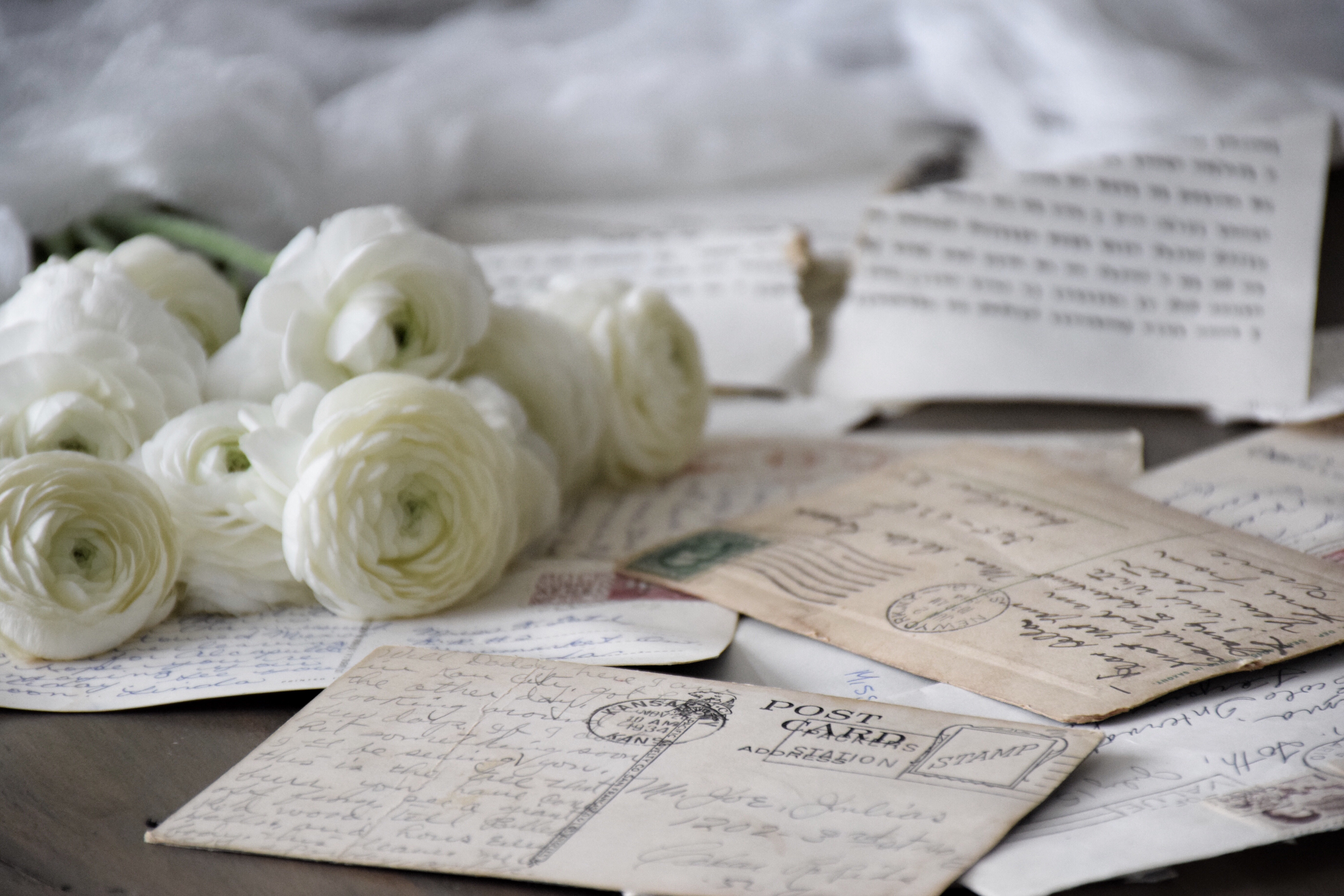 Postcards and flowers